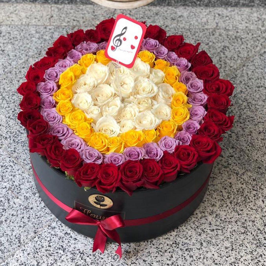 گل رز در رنگ های مختلف