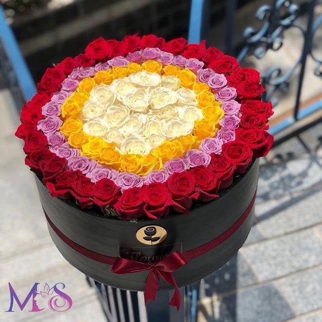 گل رز زیبا و خاص